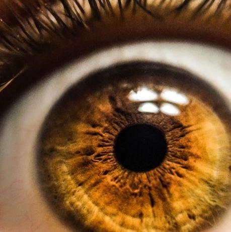 retinografía